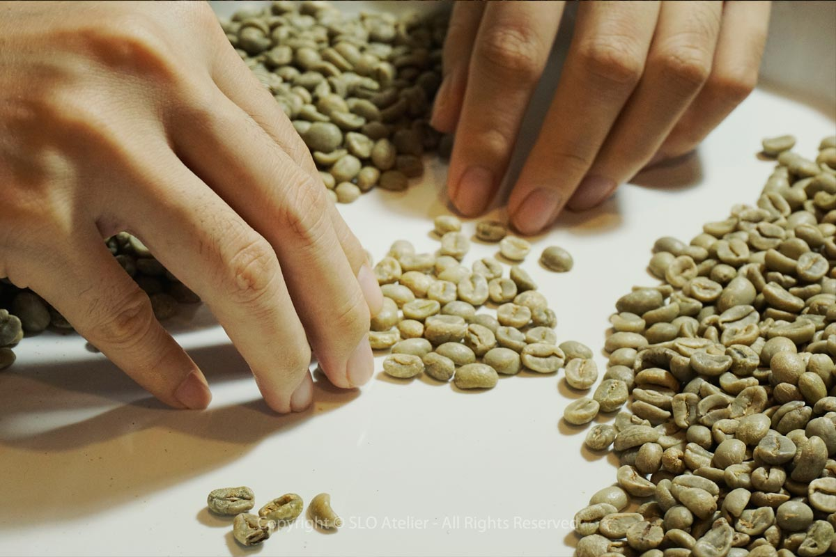 About-Us_Coffee-Roasting-Sorting